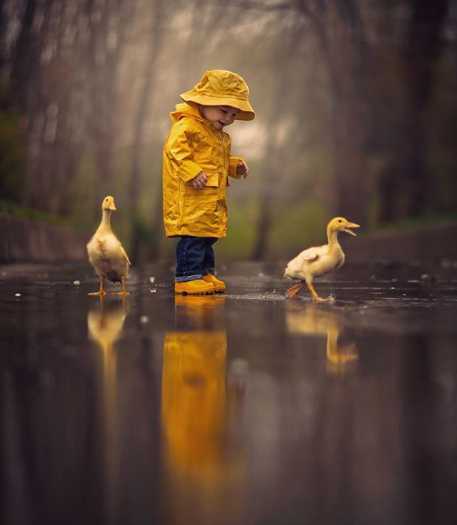 Little boy on yellow rain boots with two cute yellow ducklings. Rainly | Photo by @jakeolsonstudios #WildlifePlanet