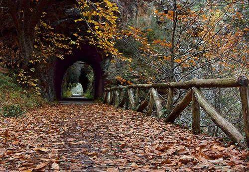 Descubre la Senda del Oso, una de las rutas más populares de Asturias.