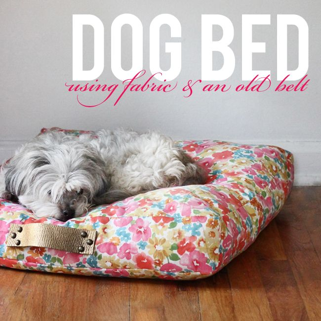 Leather Or Fabric Sofa With Dogs: Box Cushion Dog Bed Using Fabric & An Old Leather Belt