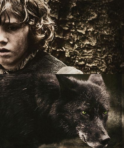 Rickon Stark and Shaggy Dog ~ Game of Thrones Fan Art | A ...