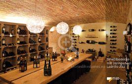 Ladenbau mit Gewölbedecke - MSD-Steinpaneel Ladrillo multicolor - 00103