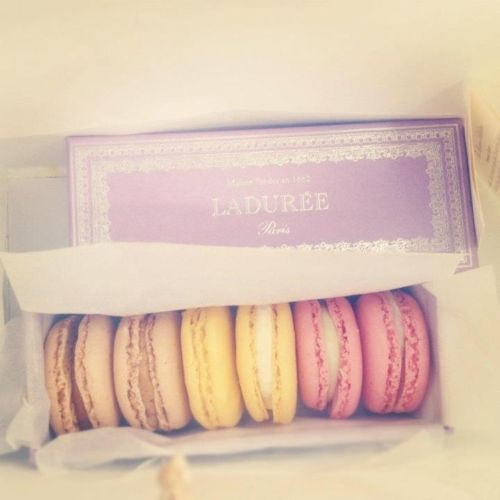 Laduree macaroons  Lavender gift box  Pretty pastels colors