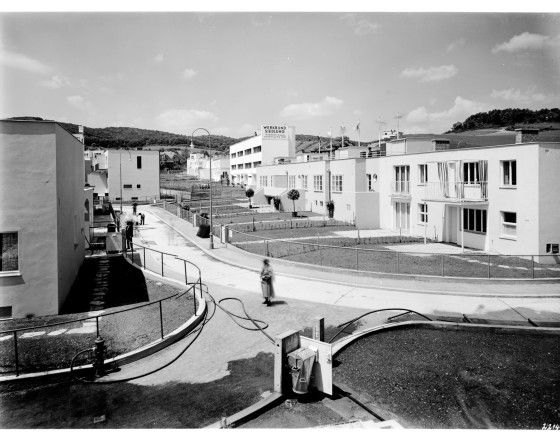 Frank Lloyd Wright – Zakłady Johnson Wax w Madison