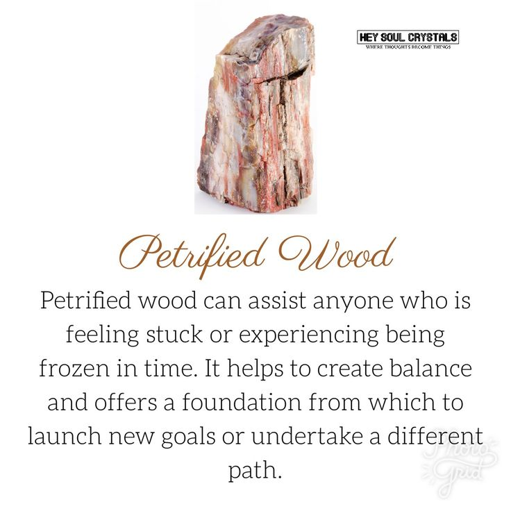 Petrified Wood Crystal Meaning. #crystalmeanings crystal meanings and uses | Crystal meanings and uses |crystal meaning healing | Crystal / Meaning / Healing/ Balancing |