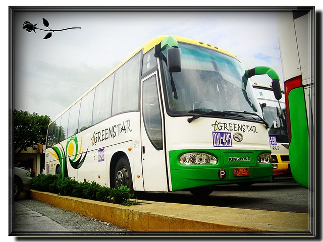 Taken @ Pacita Complex, San Pedro, Laguna - October 12, 2011    GREENSTAR EXPRESS, INC.    Bus number: 200502  Classification: Airconditioned Provincial Operation Bus  Coachbuilder: Xiamen King Long United Automotive Industry Company, Ltd. (King Long)  Chas automotive news