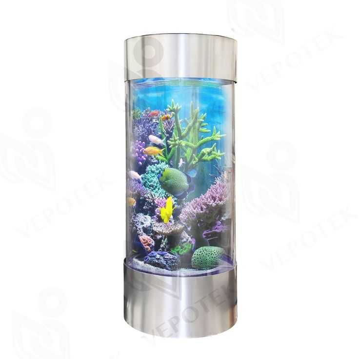 200 best aquariums fish bowls and fish tanks images on for 200 gallon fish tank dimensions