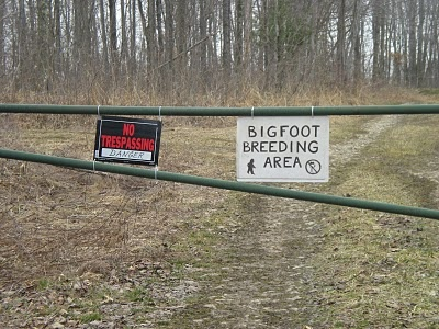 bigfoot 85 | Tales of the Trail Goddess: Bigfoot Ultra-New 50K Trail Race in Ohio!!