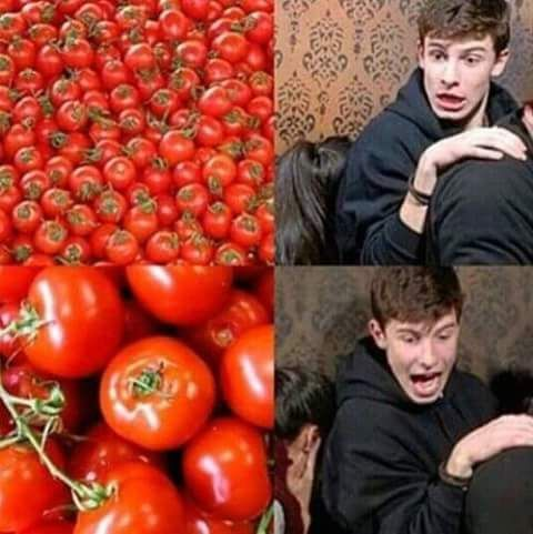 Shawn hates tomatoes!!!!
