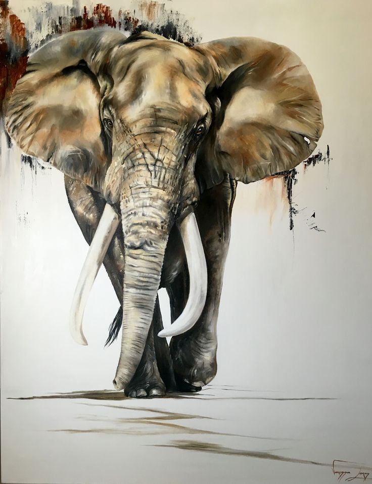 Elephant ramble, For Sale, oil on canvas, large 1.5 x 1.7 mts