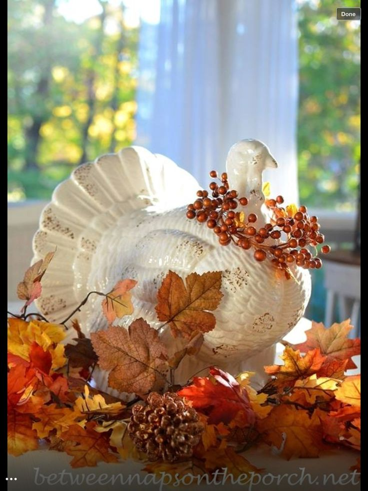 Best thanksgiving table decoration ideas images on