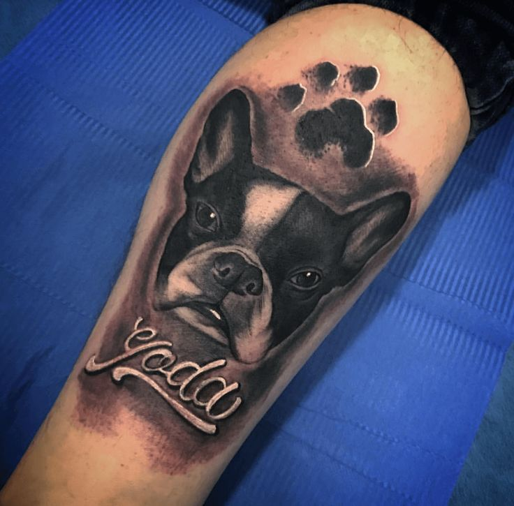 Tatuaje de perro realizado en nuestro centro de Vaguada de Madrid.    #tattoo #tattoos #tattooed #tattooing #tattooist #tattooart #tattooshop #tattoolife #tattooartist #tattoodesign #tattooedgirls #tattoosketch #tattooideas #tattoooftheday #tattooer #tattoogirl #tattooink #tattoolove #tattootime #tattooflash #tattooedgirl #tattooedmen #tattooaddict#tattoostudio #tattoolover #tattoolovers #tattooedwomen#tattooedlife #tattoostyle #tatuajes #tatuajesmadrid #ink #inktober #inktattoo