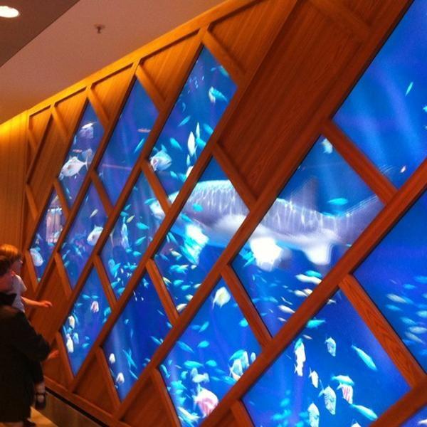 Les 25 meilleures id es de la cat gorie aquarium geant sur for Bineau mural levallois perret