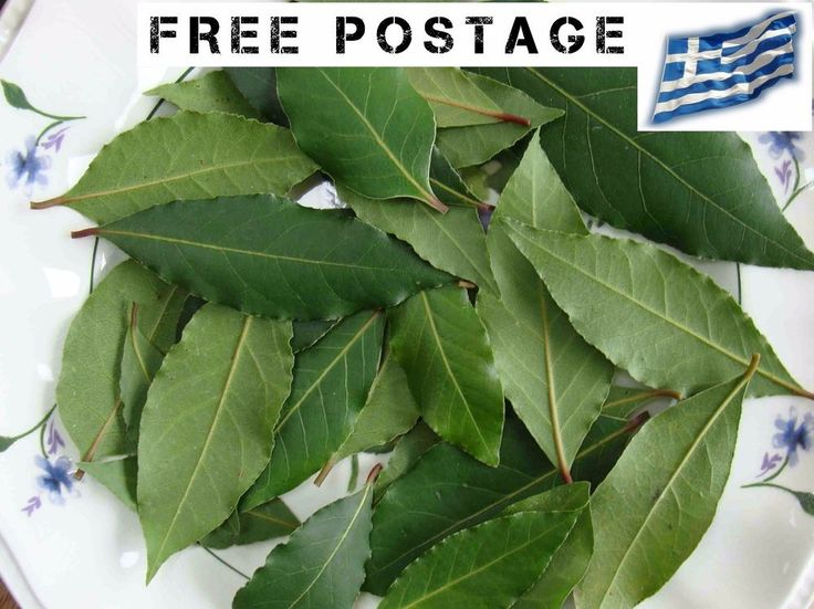 #Bay #Laurel #Leaves #Wild #Organic FRESH #GreekTea from our fields **cut to order* #Homemade
