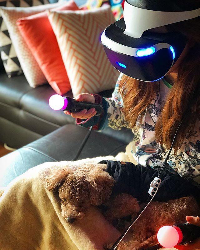 #사이보그그녀 #가상현실 #그속에서 그녀는 신이 된다 ㅋㅋㅋ #ps4pro #psvr #playstation4 #playstationkorea #iphone8plus #푸들 #プードル #poodle #poodlelove #petstagram #dog #cute #cutedog #ティーカッププードル #トイプードル #トイプー #いぬ #犬 #愛犬 #かわいい #わんこ #癒し