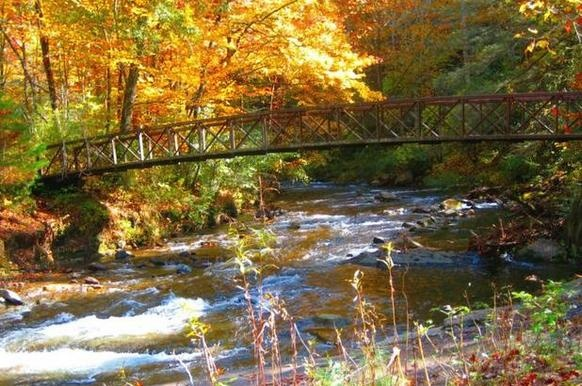 25 Best Ideas About Cherokee North Carolina On Pinterest