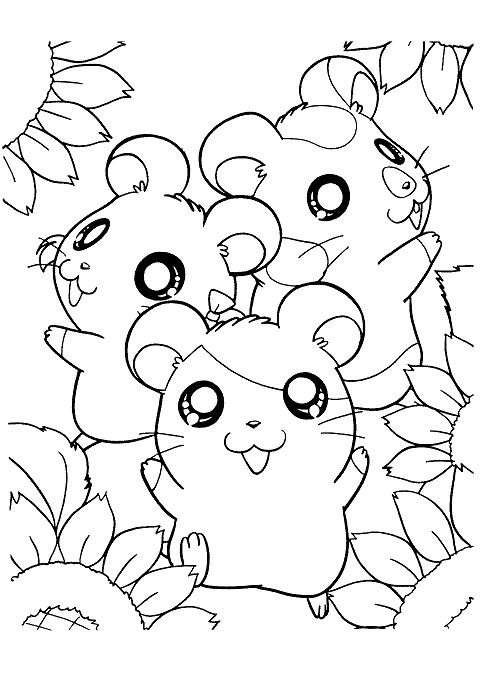 Field Mice Anime Coloring Pinterest Coloring Pages Color And