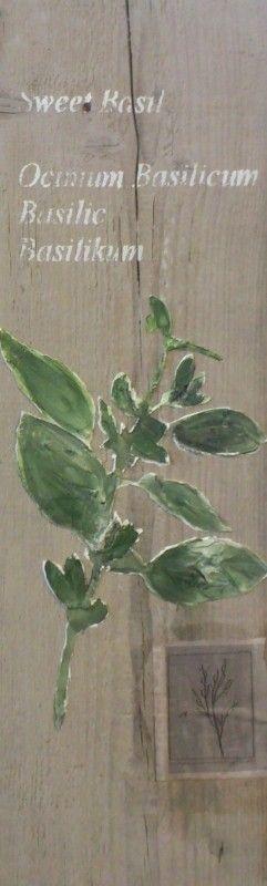 Een handgeschilderde tak zoete basilicum. Deze leuke wanddecoratie voor in de keuken of tuin is gemaakt op een onbewerkte en hergebruikte steigerplank.