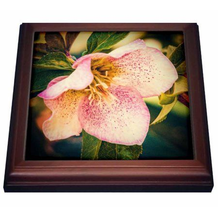 3dRose Tropical Flower, Trivet with Ceramic Tile, 8 by 8-inch
