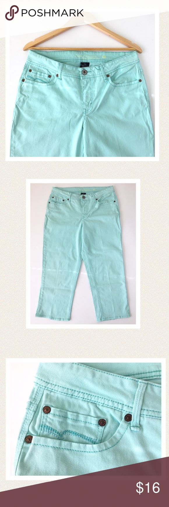 """🆕 Aqua blue cropped jeans Soft, comfy cotton/spandex blend. Detailed stitching on front and back pockets. Zips in front. Excellent condition. One tiny pinhead sized spot on inside right leg near seam (see photo). 🔹waist 34"""" 🔹hips 39"""" 🔹front rise 10"""" 🔹inseam 23"""" All measurements are approximate Faded Glory Jeans Ankle & Cropped"""