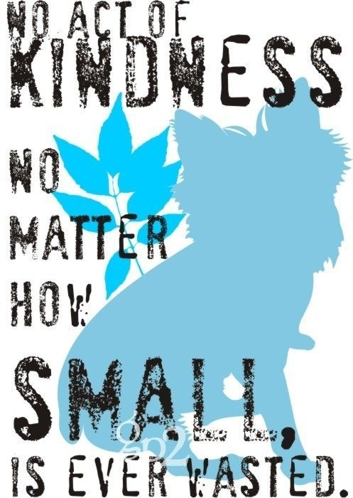 no act of kindness no matter how small is ever wasted. (yorkshire terrier)
