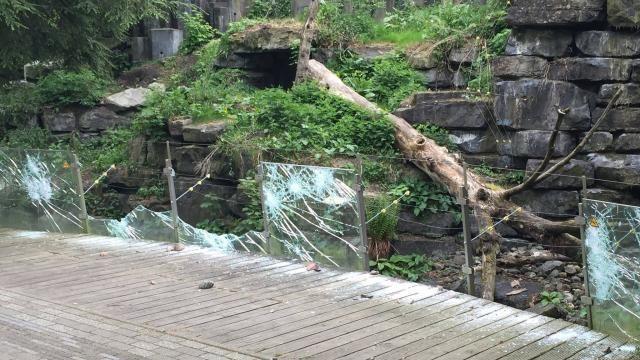cool Zeven jongeren vervolgd voor vernielingen dierenpark Emmen