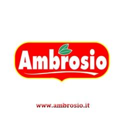 www.ambrosio.it