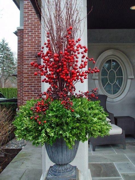 Stunning Picz: Christmas Topiary