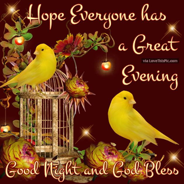 Good night sister and all ,have a restful sleep,God bless,xxx ❤❤❤✨✨✨