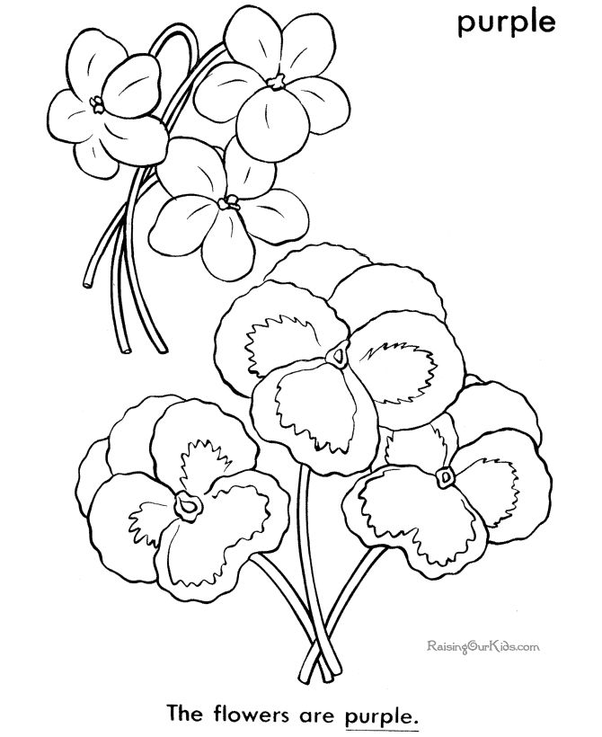 These Free Printable Flower Coloring Sheets And Pictures In This Section