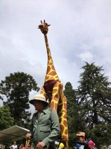 A giraffe at Festivale, Launceston Tasmania http://blog.moretas4less.com/festivale-2012/