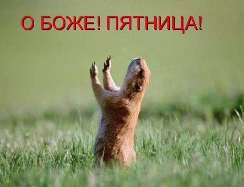 """""""Мечта о пятнице — самая распространенная среди работающего населения. Она начинается уже в понедельник и продолжается четыре дня в неделю"""" Друзья, работайте на себя. У Вас каждый день будет воскресенье!!! http://geagroup.blogspot.ru/p/blog-page_89.html"""