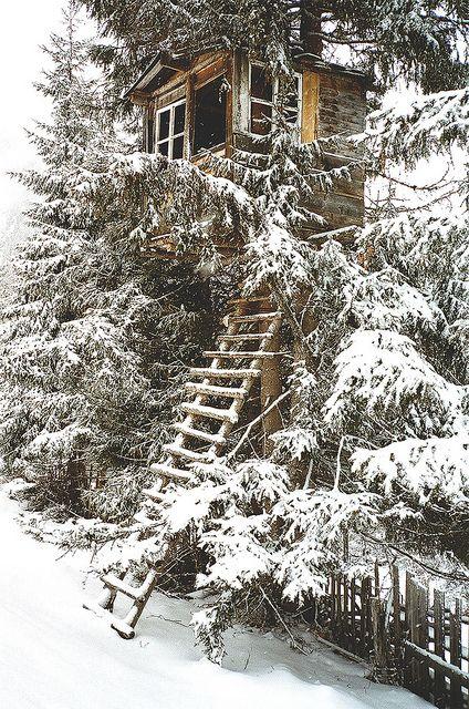 Winter Tree House