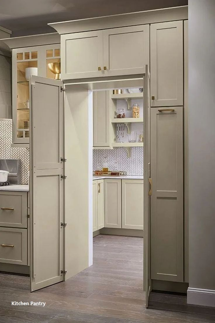 Pin By Preston Sereg On Books Worth Reading In 2020 With Images Kitchen Cabinet Plans Pantry Design Best Kitchen Cabinets
