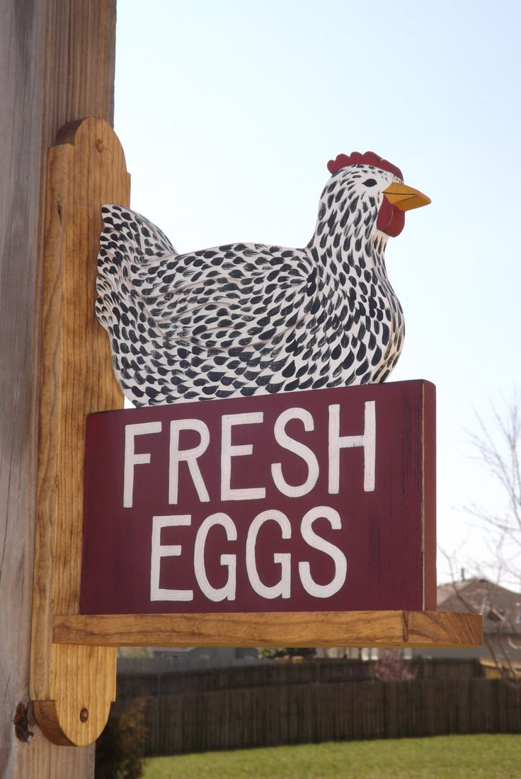 Chicken Coop Sign Speckled Hen Fresh Eggs Painted on Both Sides with Bracket. $89.95, via Etsy.