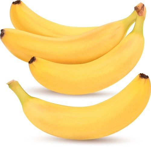 Fresh Fruits design vector set 02 Bananas free
