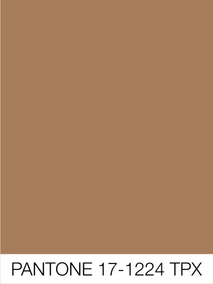 Pms Maroon Tones additionally Red Accent Walls likewise 2016 Interior Design Forecast together with Industrial Chic Wedding Ideas besides Accent Color  binations. on marsala color paint pantone