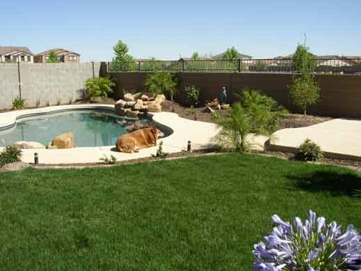 Small backyard pool and grass design this is a small for Pool design az