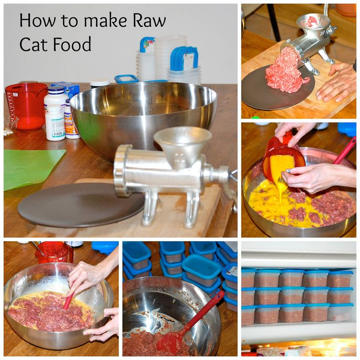 How To Make Raw Cat Food Without A Grinder