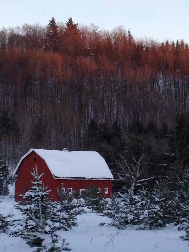 1000 images about barns amp bridges in michigan on pinterest red