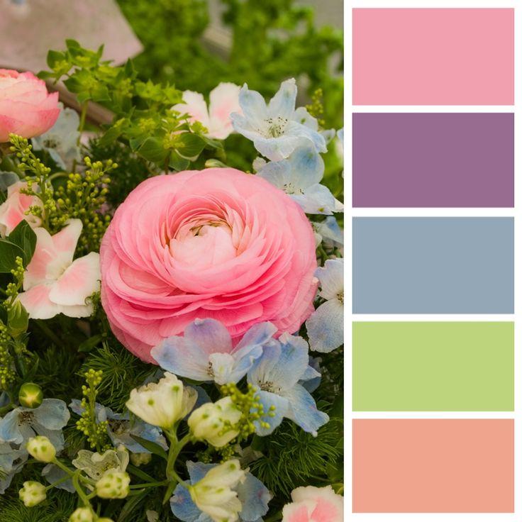 Color Palette (untitled)