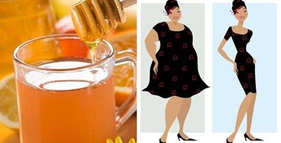Al giorno d'oggi, molte persone sono in sovrappeso, a causa degli stili di vita sbagliati, spesso fatti di sedentarietà e cattive abitudini alimentari. Combattere obesità e sovrappeso non è impossi…