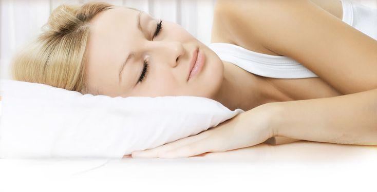 Pure Earth International | Organic Buckwheat Pillows, Fleece Pillow Protectors, Organic Pet Beds