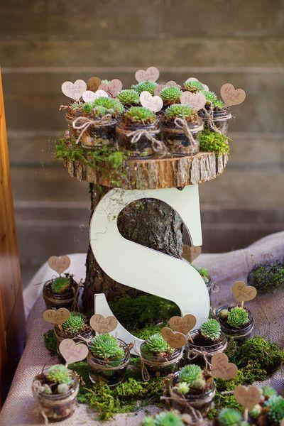 Succulents in mini jelly jars - such a cute idea! #rustic #weddingfavors {@phrenephoto}