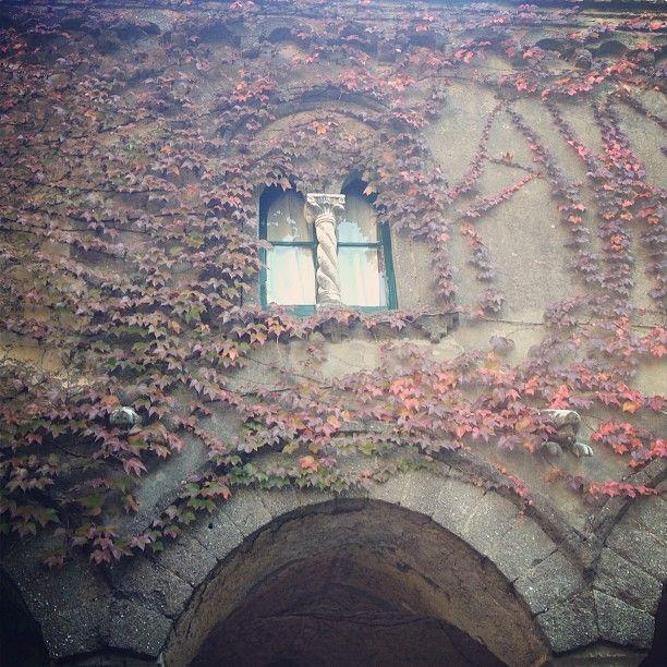 #Ravello e la (ri)scoperta di Villa Cimbrone #country #costieraamalfitana #villacombrone [Segui i nostri spostamenti su #Instagram: http://instagram.com/allyoucanitaly]