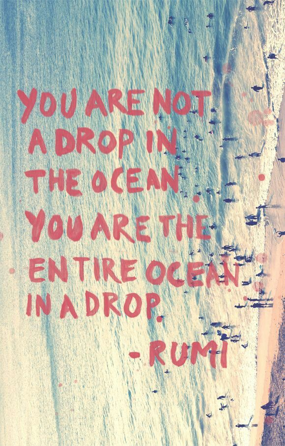 """You are not a drop in the ocean, you are the entire ocean in a drop"" ~ Rumi"