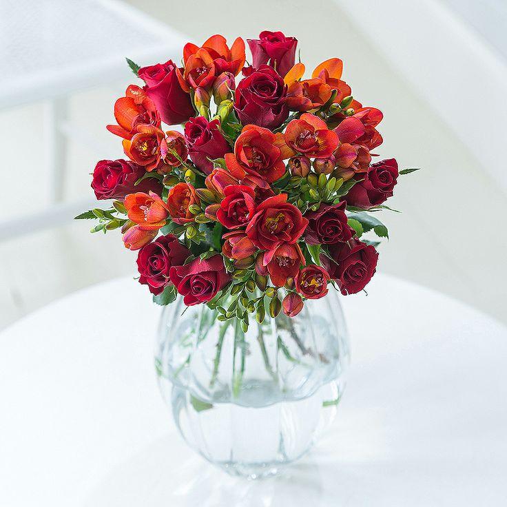 Valentine's Rose and Freesia