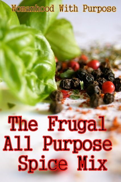 The frugal all purpose spice mix