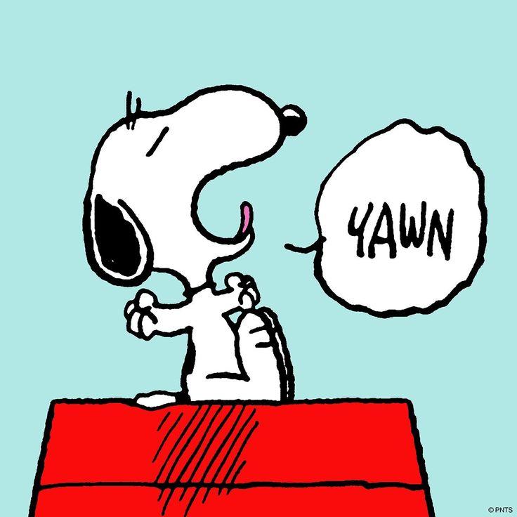 432 besten snoopy charlie brown peanuts gang bilder auf pinterest snoppy holzlager und - Charlie brown zitate ...