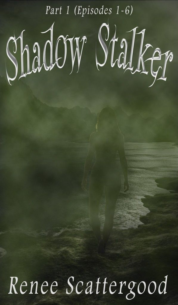 New Cover, New Article and New Chapter of Shadow Stalker!