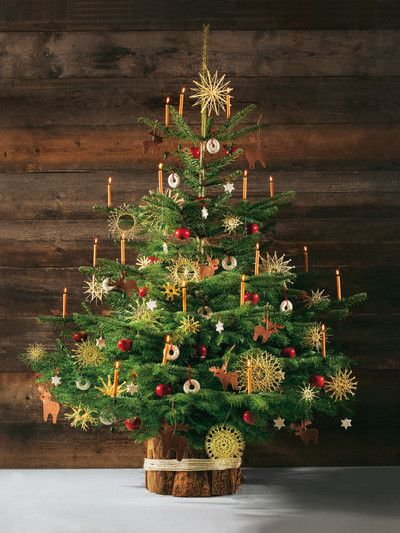 Strohsterne am Christbaum - straw stars on the Christmas tree. Traditional in rural Alpine Austria.